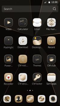 Gold Style Theme screenshot 1