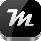 Metallic Theme icon