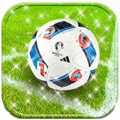 Football Theme 2016 Soccer icon