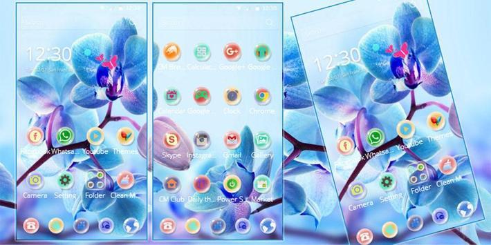 Orchid Flower Theme blossom apk screenshot