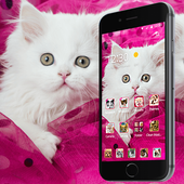 Pink Persian white Cat theme icon
