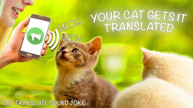 Cat Translate Sound screenshot 1