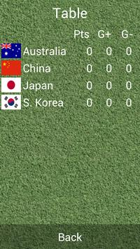 East Asian Cup 2013 screenshot 1