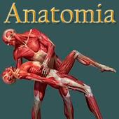 Anatomia humana gratis en español icon