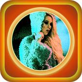 Top MP3 - Sandra N (Muzică) icon