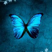 Butterflies LW icon