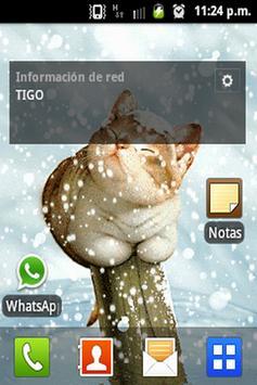 Cat in the snow LW screenshot 1