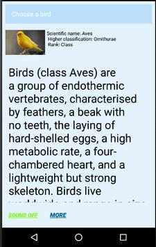 Animal Kingdom screenshot 3