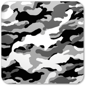 Exotic Camouflage LWP icon