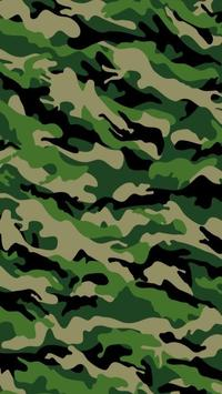 Exotic Camouflage LWP poster