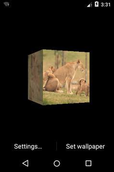 3D Small Lion Cube Theme LWP screenshot 1
