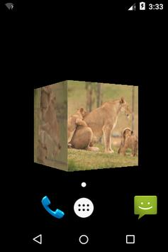 3D Small Lion Cube Theme LWP screenshot 3