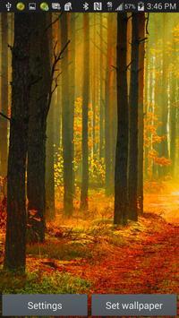 Forest Live Wallpaper screenshot 9
