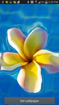 Flower Ripple Live Wallpaper screenshot 1