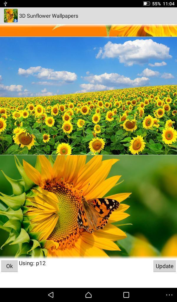 3D Sunflower Wallpaper - Screen Lock, Sensor, Auto for ...