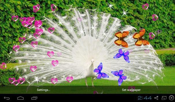3D Peacocks Live Wallpapers Apk Screenshot