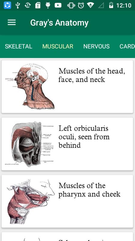 Gray\'s Anatomy - Atlas || Offline || Free for Android - APK Download