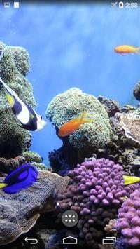 Underwater World Wallpapers screenshot 1