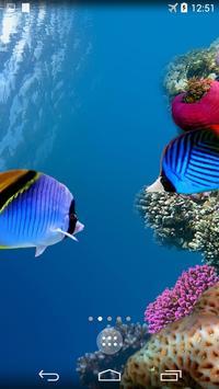 Sea Life 4K Wallpapers poster