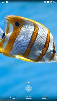 Sea Life 4K Wallpapers screenshot 1