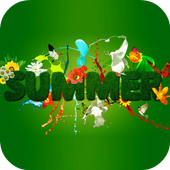 Summer Live Wallpaper icon