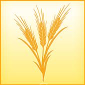 SRE Productor App icon
