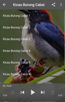 Kicau Burung Cabai apk screenshot