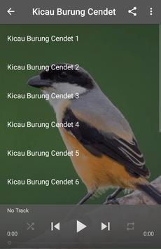 Kicau Burung Cendet screenshot 3