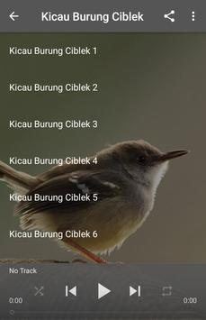 Kicau Burung Ciblek screenshot 5