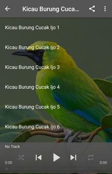 Kicau Burung Cucak Ijo poster
