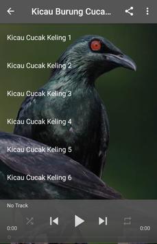 Kicau Burung Cucak Keling poster