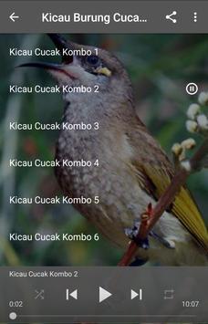 Kicau Burung Cucak Kombo poster