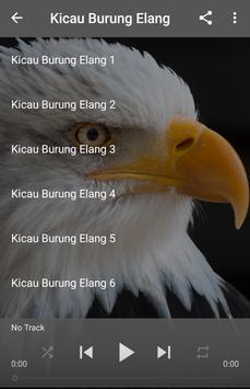 Suara Burung Elang poster
