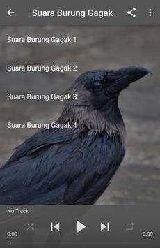 Suara Burung Gagak apk screenshot