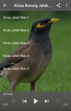 Kicau Burung Jalak Nias apk screenshot