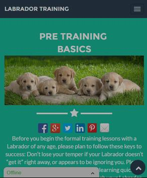 Labrador Training Guide poster