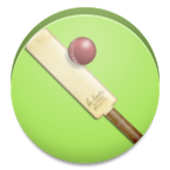 Casual Cricket icon