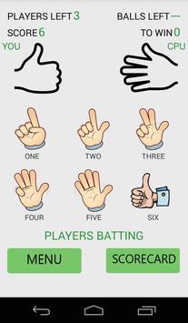 Casual Cricket apk screenshot