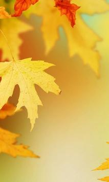 Autumn Leaves Wallpapers poster
