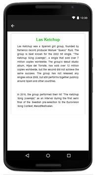 Las Ketchup - Music And Lyrics screenshot 4