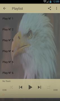 Bald Eagle klinkt-poster
