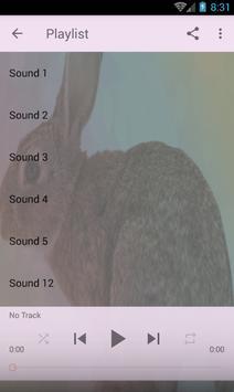 Rabbit sounds screenshot 1