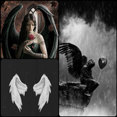 Free Dark Angel Wallpaper HD Collection icon