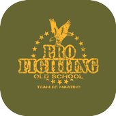 Pro Fighting Old School icon