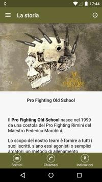 Pro Fighting Old School poster