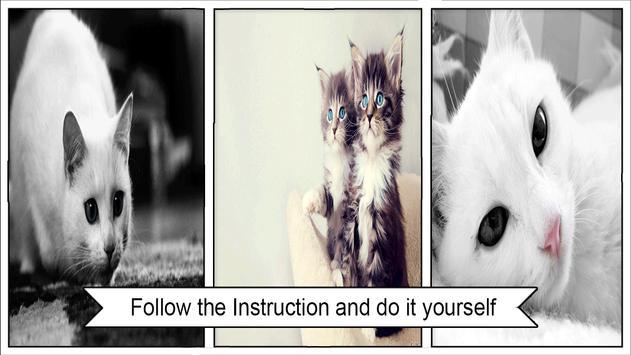 cat wallpaper screenshot 1