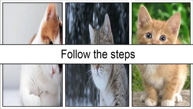 cat wallpaper screenshot 3