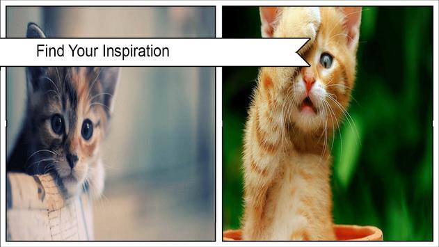cat wallpaper screenshot 4