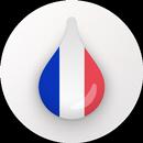 Drops:免费学习法语和词汇 APK