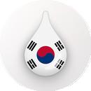 Drops:学习韩语和韩语词汇 APK